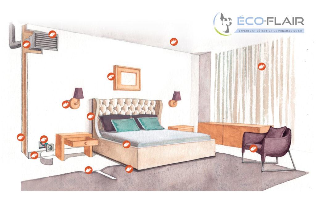 Les punaises de lit dans une chambre d'hôtel
